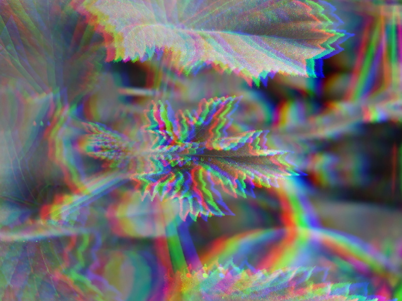 2Fstorage2Femulated2F02FDCIM2FCamera2FIMG 20200110 115001 Glitch
